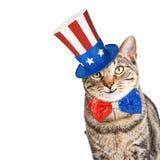 Śmieszny Amerykański Patriotyczny kot Obraz Stock