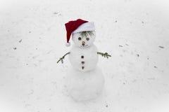 Śmieszny bałwan na śniegu Obrazy Royalty Free