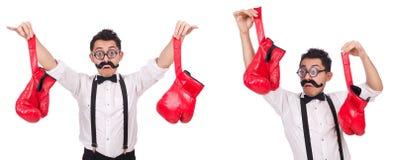 Śmieszny bokser odizolowywający na białym tle Obraz Stock