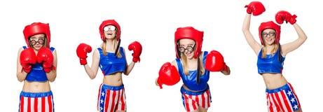 Śmieszny bokser odizolowywający na bielu Obrazy Stock
