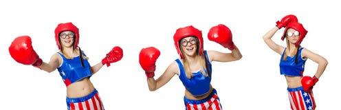 Śmieszny bokser odizolowywający na bielu Zdjęcie Stock