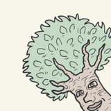 Śmieszny drzewo Zdjęcia Stock
