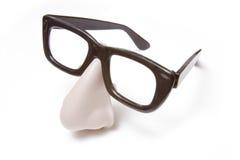 śmieszny eyeglasses nos zdjęcie stock