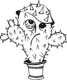Śmieszny kaktus Obrazy Royalty Free
