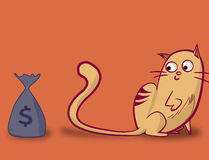 Śmieszny kot patrzeje torbę pieniądze Zdjęcia Royalty Free
