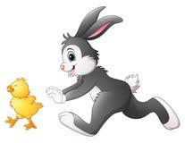 Śmieszny królik kreskówki cyzelatorstwa kurczątko royalty ilustracja