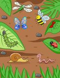 śmieszny kreskówka insekt ilustracja wektor
