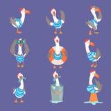 Śmieszny kreskówki seagull pokazuje różne akcje i emocje ustawia, śliczni komiczni ptasi charaktery ilustracji