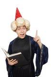 Śmieszny mądry czarownik odizolowywający Obraz Royalty Free