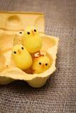 Śmieszny mały zabawkarski kurczak w jajecznym pudełku Zdjęcie Royalty Free