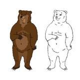 Śmieszny niedźwiedź Fotografia Royalty Free