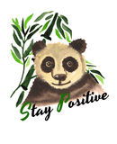 Śmieszny panda niedźwiedź Zdjęcia Royalty Free