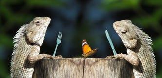 Śmieszny romantyczny gość restauracji, dzieli pojęcie Fotografia Royalty Free