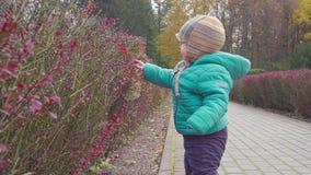 Śmieszny uśmiechający się 1 roczniak chłopiec odprowadzenie w jesień parku przy zmierzchem z chlebem w ręce szczęśliwy dzieciństw zbiory