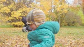 Śmieszny uśmiechający się 1 roczniak chłopiec odprowadzenie w jesień parku przy zmierzchem z chlebem w ręce szczęśliwy dzieciństw zdjęcie wideo