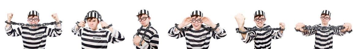 Śmieszny więźniarski więzień w pojęciu Zdjęcie Royalty Free