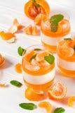 Śmietankowy panny cotta z pomarańcze galaretą w pięknych szkłach, świeża dojrzała mandarynka na białym drewnianym tle, Wyśmienici obraz royalty free