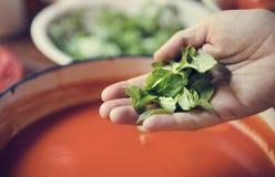 Śmietankowy pomidorowego kumberlandu fotografii przepisu karmowy pomysł fotografia royalty free