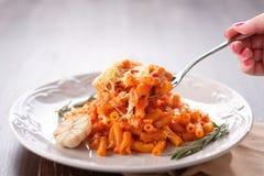 Śmietankowy Włoski makaron z pieczarkami, pomidory obraz stock