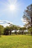 Śmigłowcowy latanie w parku w national mall washington dc zdjęcia royalty free