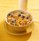 Śniadanie: kukurydzani płatki z czarnymi jagodami w mo Zdjęcie Royalty Free