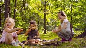 Śniadanie na trawie zbiory wideo