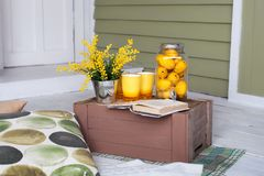 Śniadanie na wygodnej werandzie Domowej roboty lemoniada na ganeczku na gorącym dniu Lato kraju jard z poduszkami, mimoza kwiatam obraz stock