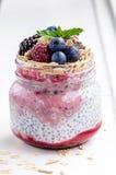 Śniadanie: oatmeal z jagodami, chia ziarnami i dokrętkami, zdjęcia royalty free