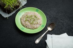 Śniadanie od oatmeal owsianki i microgreen jest ładunkiem energii, detoxification i ciężaru strata, zdjęcia royalty free