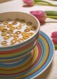 śniadaniowy zboże Fotografia Royalty Free
