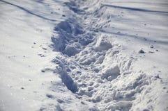Śnieżna ścieżka zdjęcia stock