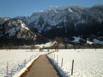 Śnieżna ścieżka Zdjęcie Royalty Free