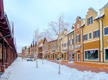 Śnieżna aleja w Holenderskiej ulicie Fotografia Royalty Free