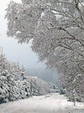 Śnieżna boczna droga Obraz Stock