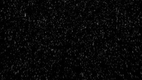 Śnieżna burza Ciężki Bezszwowy Loopp - alfa - Szeroki strzał - zbiory wideo