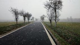 Śnieżna burza na drodze Fotografia Stock
