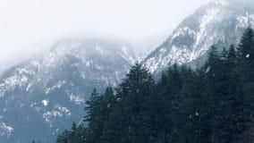 Śnieżna burza W Halnym pustkowiu zbiory wideo