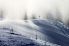 Śnieżna burza w zimy krainie cudów zdjęcia stock