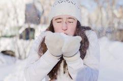 Śnieżna dmuchawa Obraz Stock