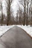 Śnieżna droga przemian Zdjęcia Stock