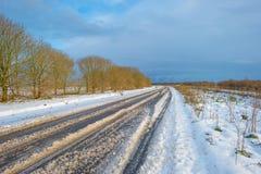 Śnieżna droga przez zamarzniętego krajobrazu wzdłuż drzew Obrazy Royalty Free