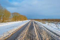 Śnieżna droga przez zamarzniętego krajobrazu wzdłuż drzew Zdjęcie Royalty Free