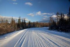 Śnieżna droga w drewna obraz stock