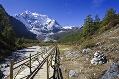 Śnieżna góra Obrazy Stock