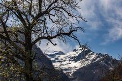 Śnieżna góra nad wiosny doliną zdjęcie royalty free