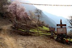 Śnieżna górska wioska, Qubeng wioska, Yunnan, Chiny Zdjęcie Royalty Free