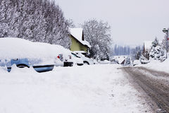 Śnieżna klęska Zdjęcia Stock