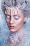 Śnieżna królowa Fantazi dziewczyny portret Zimy czarodziejki portret Młoda kobieta z kreatywnie srebnym artystycznym makijażem Zi Obraz Royalty Free