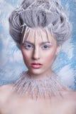 Śnieżna królowa Fantazi dziewczyny portret Zimy czarodziejki portret Młoda kobieta z kreatywnie srebnym artystycznym makijażem Zi Obrazy Stock