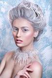 Śnieżna królowa Fantazi dziewczyny portret Zimy czarodziejki portret Młoda kobieta z kreatywnie srebnym artystycznym makijażem Zi Zdjęcia Stock